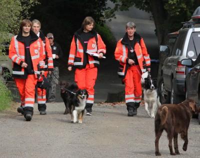 Georgie wird Rettungshund! - Erfahrungsbericht eines Hundes nach einem Jahr Ausbildung