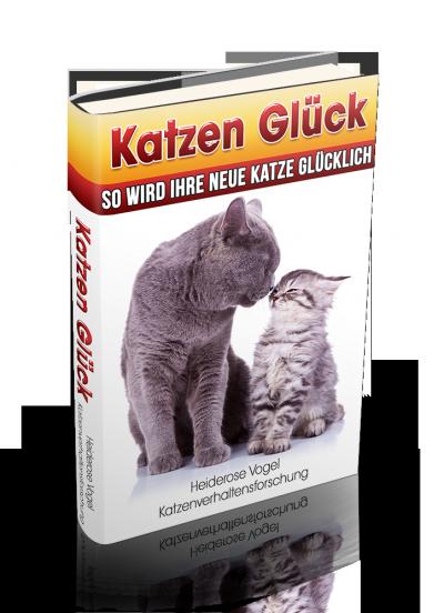 Katzen Glück - so wird Ihre neue Katze glücklich - ein liebevoller Ratgeber für Katzenliebhaber