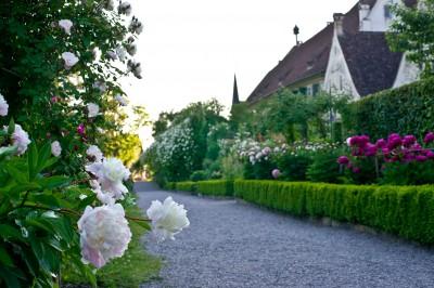 Ritterfräuleins Gartenlust am Bodensee