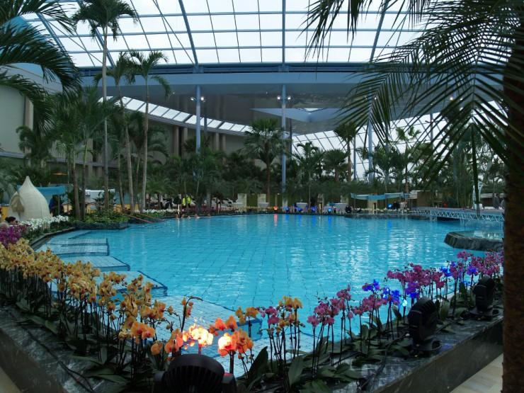 Schwimmbadaufbereitung mit zuverlässigen Desinfektionsanlagen und Dosierpumpen