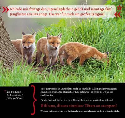 Freitags den Jugendjagdschein geholt, samstags fünf Jungfüchse getötet