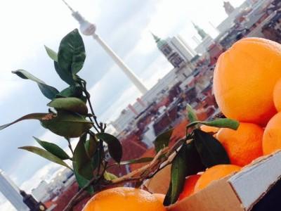 Naranjas Quique erlaubt die originalen Orangen aus Valencia in Rekordzeit in Deutschland zu genießen
