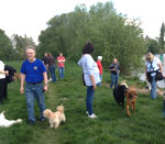Am Ostermontag gemeinsamer Hundespaziergang