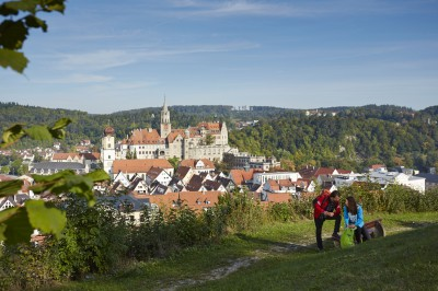 Sommer unterm Hohenzollernschloss