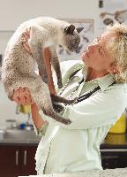 Katzennieren brauchen Hilfe!