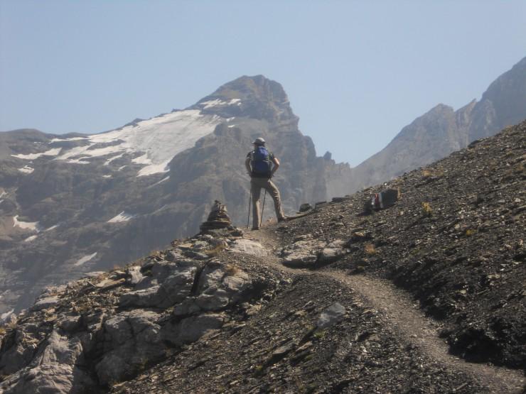 Unterwegs auf Bärenpfaden und in Fjordlandschaften