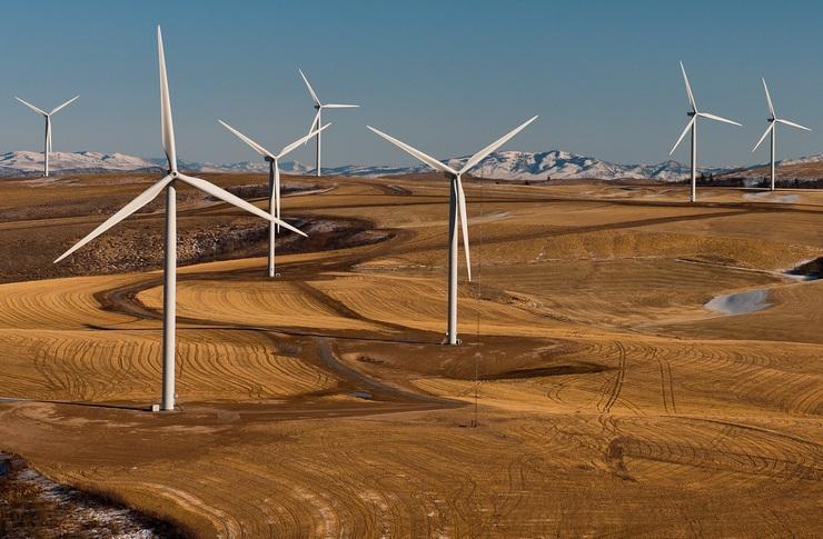 NAEB-Stromverbraucherschutz: Hilfe! zu viel Ökostrom!