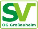 Im Alter von 95 Jahren erhält die SV-OG Großauheim die SV-Zertifizierung