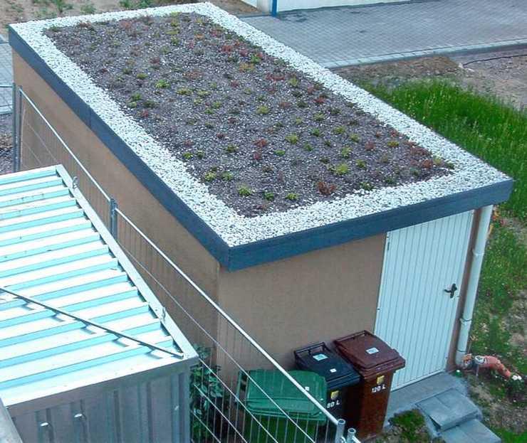 Garagenrampe.de und Dachbegrünung