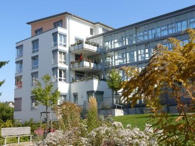 Hand in Hand arbeiten Frankfurt, Sozialbehörde und Ehrenamt