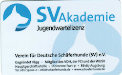 Carmen Sauer und Jürgen Strohbach-Hofmann erhalten SV-Lizenzen