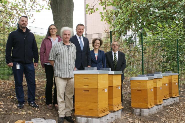 Bienen finden bei SIGNAL IDUNA ein neues Zuhause