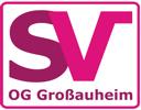 Bei der SV-OG Großauheim nun auch Agility-Training