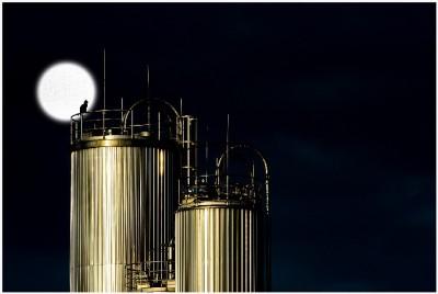 Wasserstoff verteuert die Energiewende zusätzlich