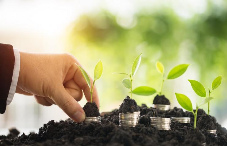 forsa-Studie: Investmentverhalten der Deutschen bei grünen Anlagen