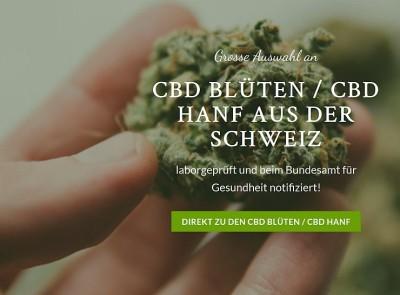 Hanfpost.ch liefert Ihnen alles zum Thema CBD
