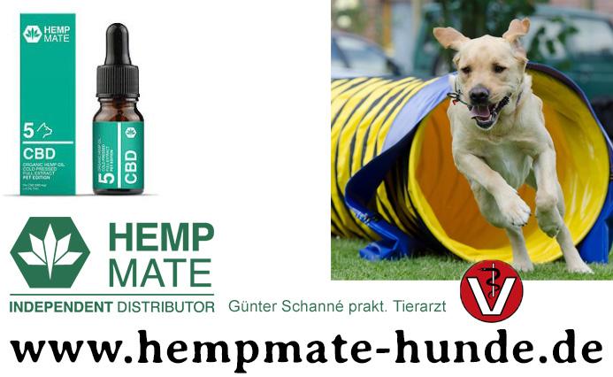 CBD fuer Hunde - natuerliches CBD Oel aus 100% Hanf - immer mehr Tieraerzte, Heilpraktiker, Hundetrainer vertrauen auf CBD