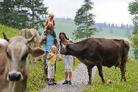 Familien erobern das Siebenbergeland