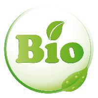 Bio-Massageöle - Für eine schadstofffreie Massage