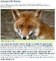 Pressespiegel Wildtierschutz Deutschland