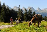 Auf natürlichen Pfaden durch die Ostschweiz
