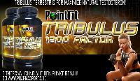 Belastbarkeit während des Trainings erhöhen dank PointFit Tribulus 1200 Factor
