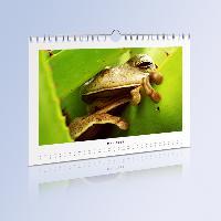 Kalender aus echtem Fotopapier