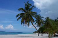 Dominikanischer Strand Saona wurde zum besten Strand 2012 gewählt