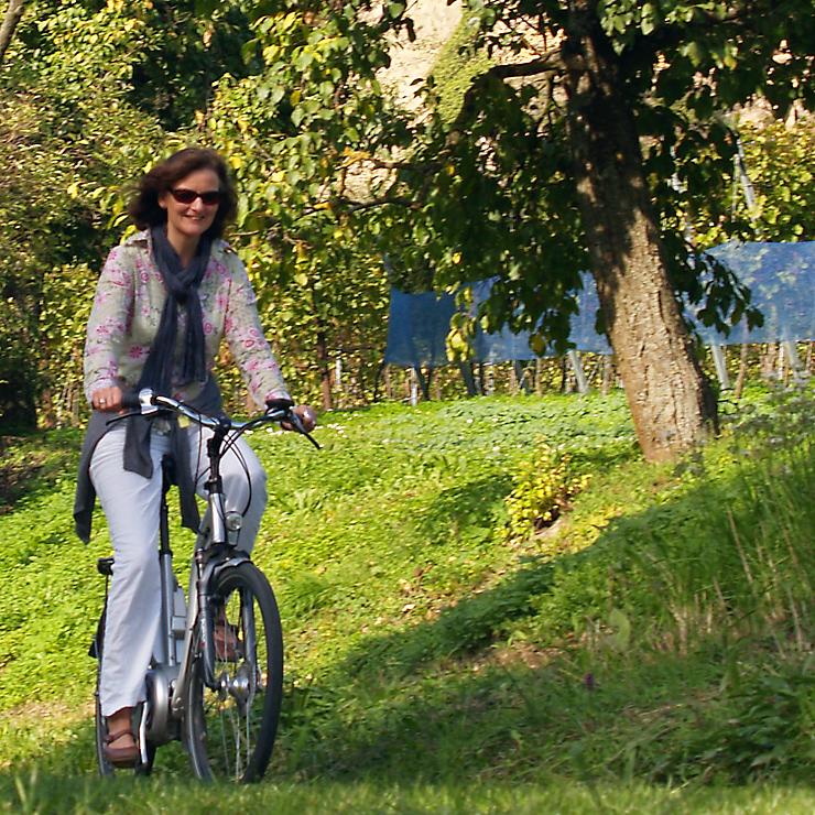 Radfahren im Markgräflerland