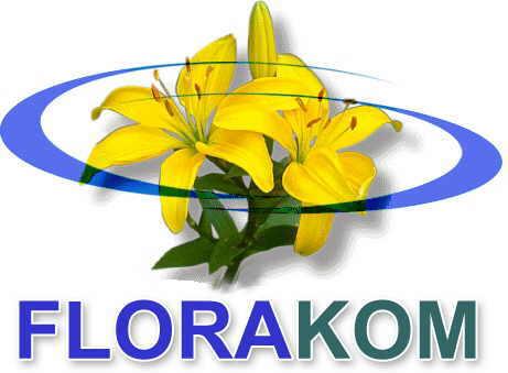 Jetzt für den Frühling pflanzen: Mehr als 650 Blumensorten verfügbar auf florakom-blumenzwiebeln.de