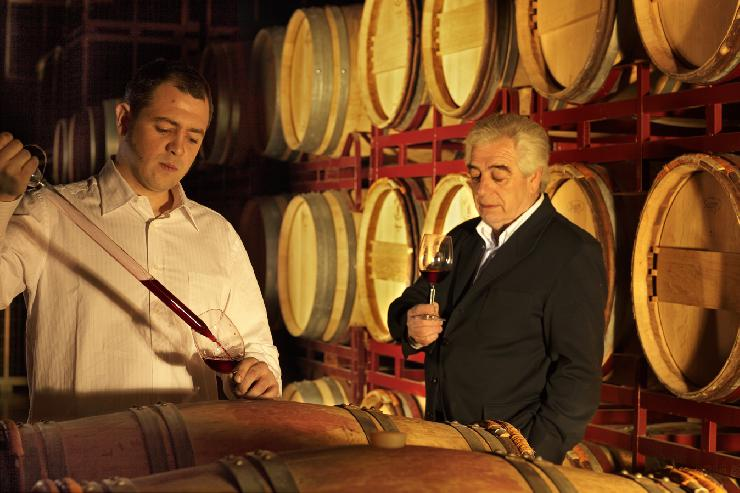 Rindchens Weinkontor stellt das Dream-Team des spanischen Weinbaus vor: Die Tempranillo-Traube und das kleine Eichenfass