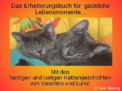 Das Erheiterungsbuch für glückliche Lebensmomente - Mit den herzigen und lustigen Katzengeschichten von Valentino und Luna von Nicki Gülding