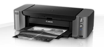 Professionelle Fotos selbst herstellen - mit dem Canon Pixma Pro-10 und seinen hochwertigen Druckerpatronen