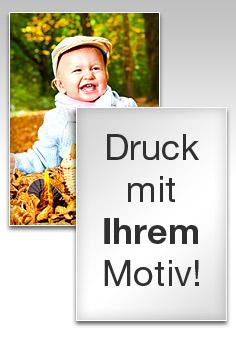 Primus-Print.de senkt erneut Preise für Poster & Plots