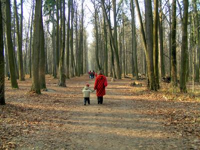 Draußen spielen - das Beste für ein Kind