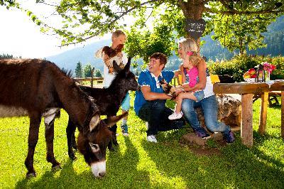 Tierisch gute Sommerferien im Bergdorf der Tiere!
