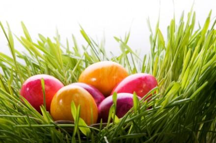 Feiern Sie Ostern mit dem Cinnamon Circle