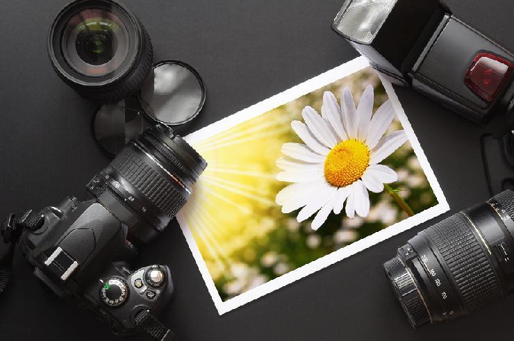 Schnäppchenkameras: Bei diesen Modellen sollten Sie zuschlagen