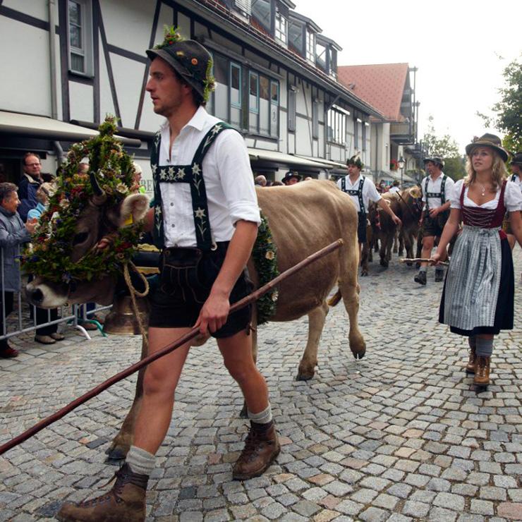 Ein Viehscheid mitten in der Stadt