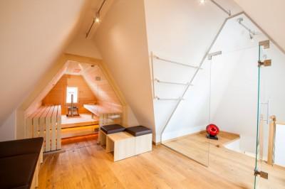 online pr spezialist sauna in dachschr ge mit glasfront. Black Bedroom Furniture Sets. Home Design Ideas